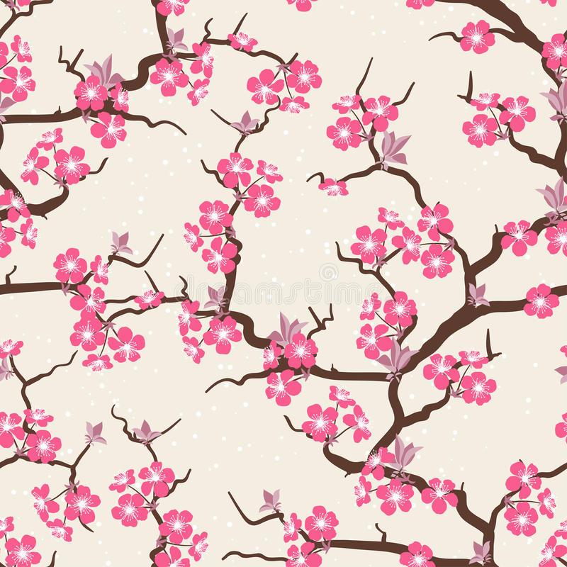 Άνευ ραφής σχέδιο λουλουδιών ανθών κερασιών