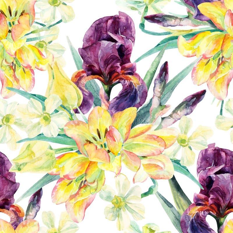 Άνευ ραφής σχέδιο λουλουδιών με τις ίριδες, τις τουλίπες, daffodils και τα φύλλα watercolor διανυσματική απεικόνιση