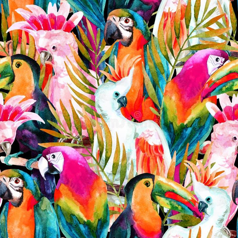 Άνευ ραφής σχέδιο παπαγάλων Watercolor ελεύθερη απεικόνιση δικαιώματος