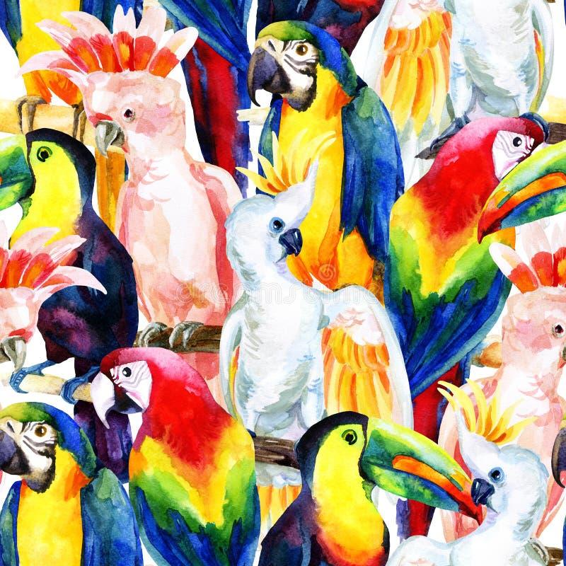 Άνευ ραφής σχέδιο παπαγάλων Watercolor απεικόνιση αποθεμάτων
