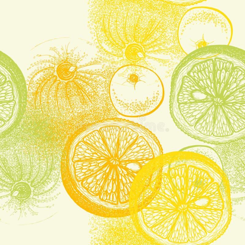 Άνευ ραφής σχέδιο ταπετσαριών με συρμένα τα χέρι εσπεριδοειδή πορτοκαλιών στο vec απεικόνιση αποθεμάτων
