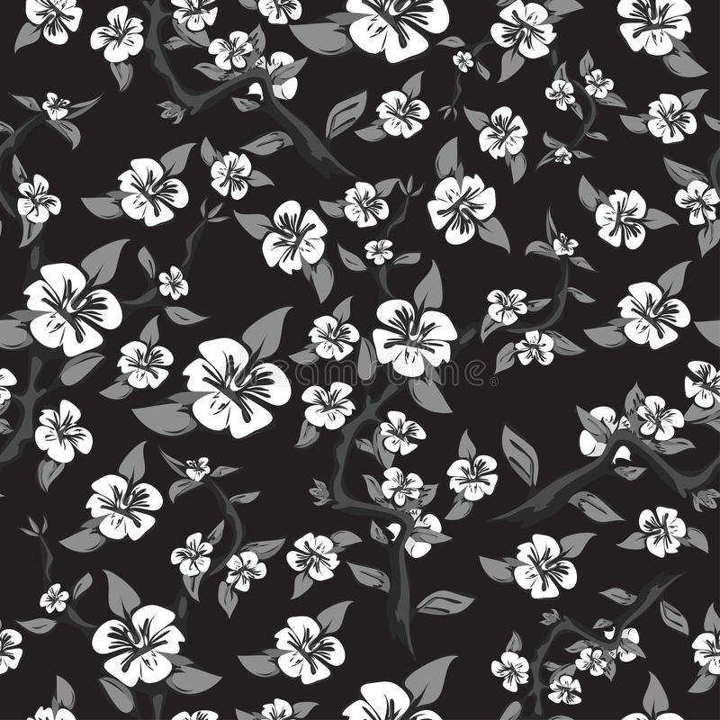 Άνευ ραφής σχέδιο των άσπρων λουλουδιών σε ένα μαύρο υπόβαθρο Αφηρημένο ανθίζοντας δέντρο μηλιάς στα γραπτά χρώματα απεικόνιση αποθεμάτων