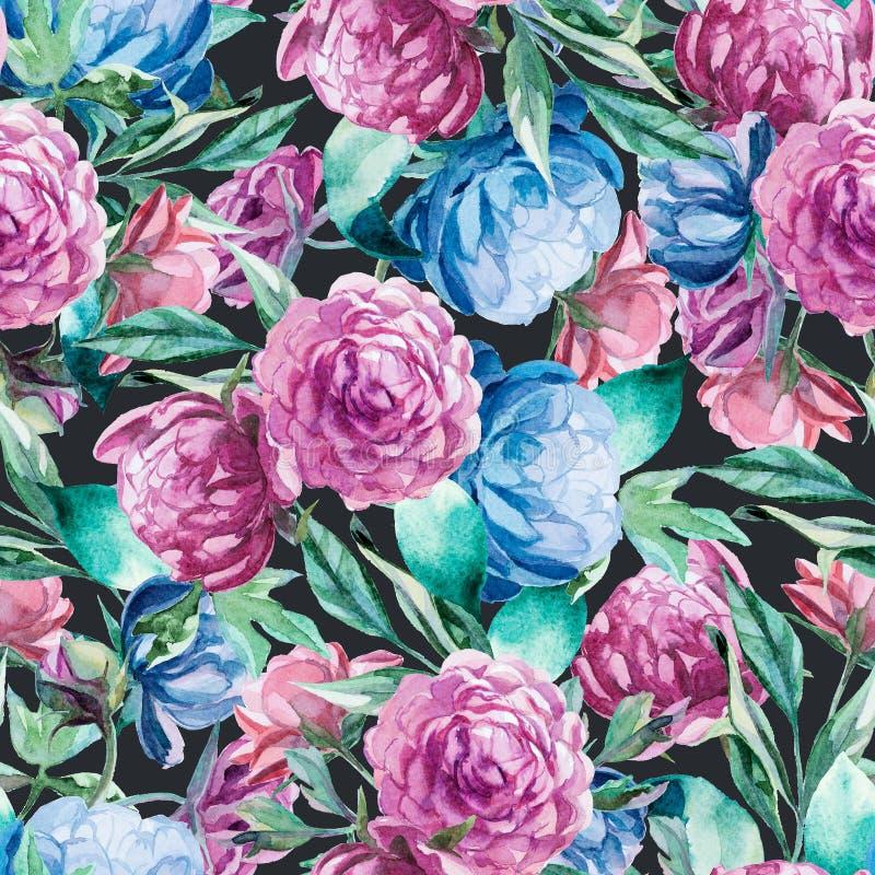 Άνευ ραφής σχέδιο των μπλε και κόκκινων peonies watercolor στη σκοτεινή πλάτη διανυσματική απεικόνιση