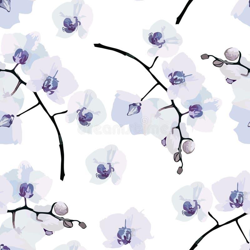 Άνευ ραφής σχέδιο των ορχιδεών λουλουδιών απεικόνιση αποθεμάτων