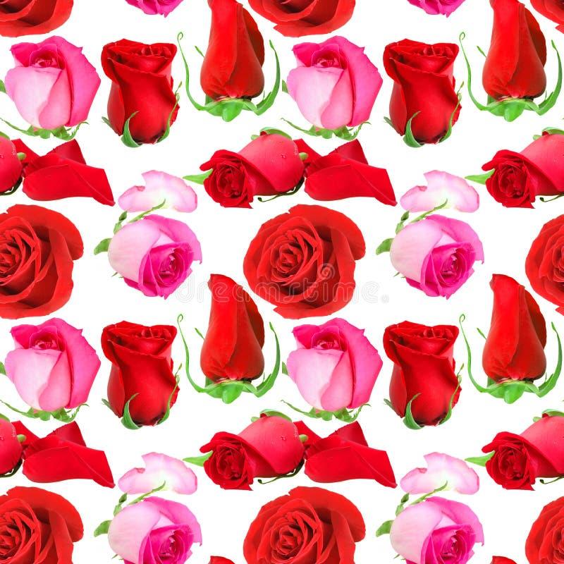 Άνευ ραφής σχέδιο των λουλουδιών τριαντάφυλλων στοκ φωτογραφία