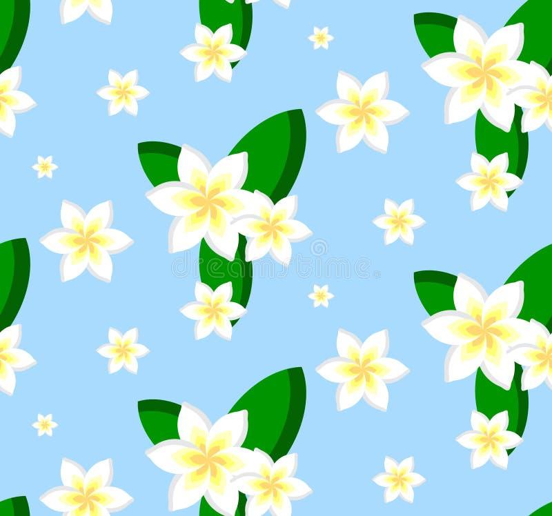 Άνευ ραφής σχέδιο των λουλουδιών plumeria διανυσματική απεικόνιση