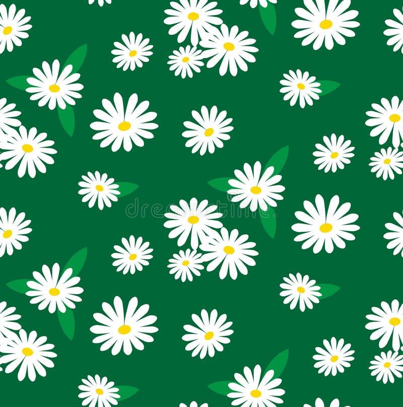 Άνευ ραφής σχέδιο των chamomile λουλουδιών απεικόνιση αποθεμάτων