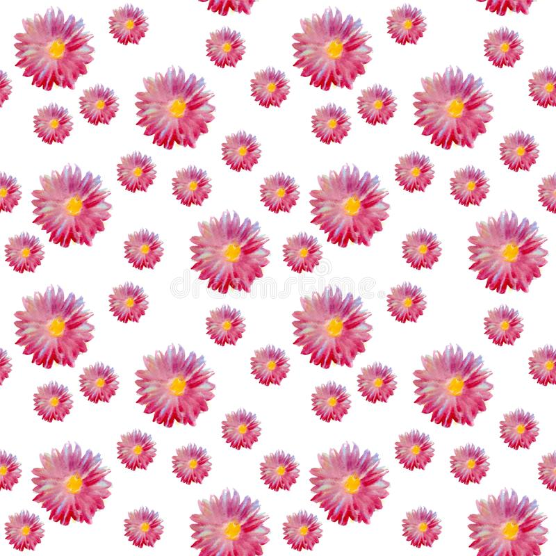 Άνευ ραφής σχέδιο watercolor με τα όμορφα λουλούδια αστέρων ελεύθερη απεικόνιση δικαιώματος