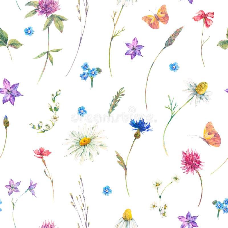 Άνευ ραφής σχέδιο Watercolor με τα wildflowers διανυσματική απεικόνιση