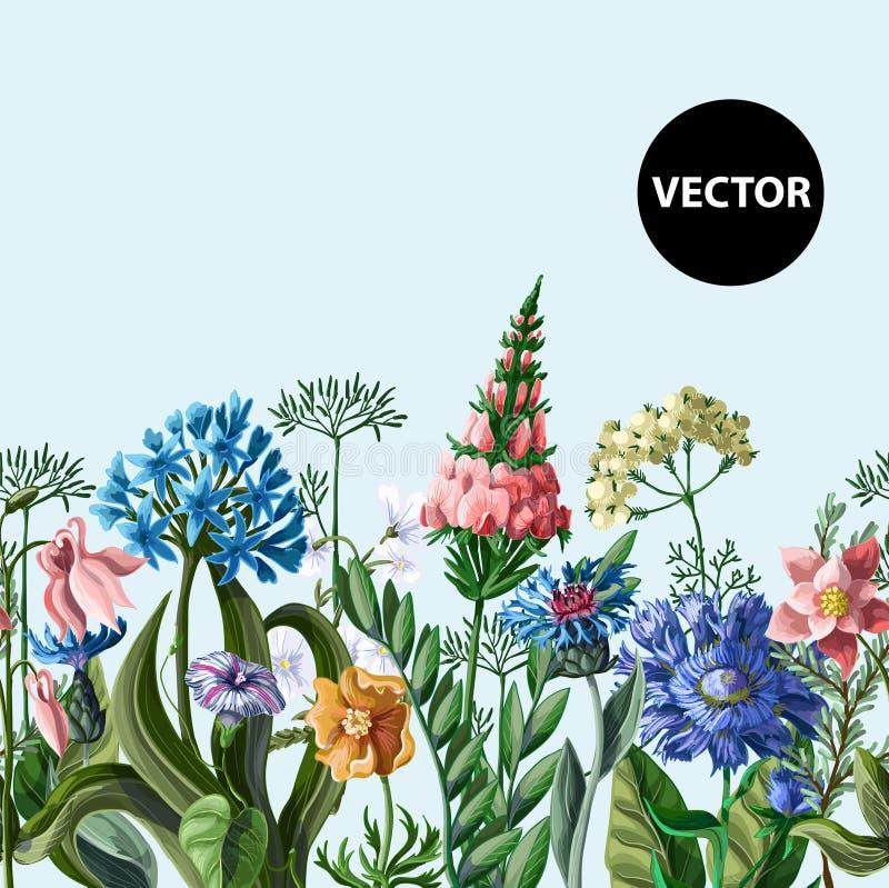 Άνευ ραφής σύνορα με τα άγρια λουλούδια επίσης corel σύρετε το διάνυσμα απεικόνισης ελεύθερη απεικόνιση δικαιώματος