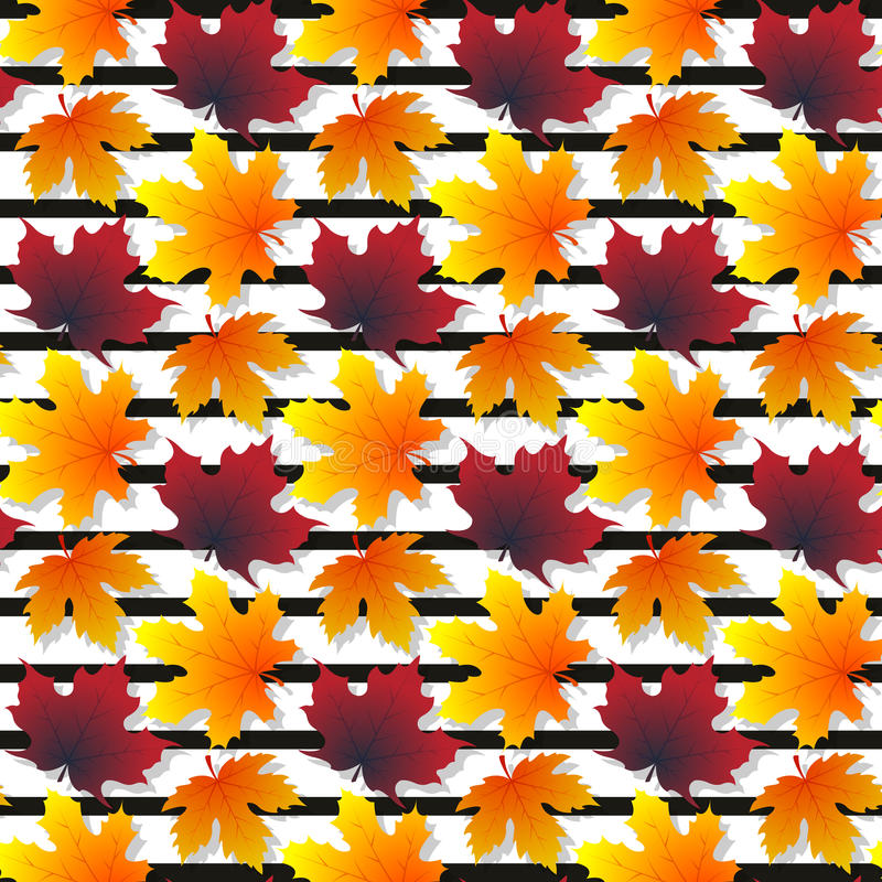 Άνευ ραφής σύσταση σχεδίων φύλλων σφενδάμου με τα απομονωμένα στοιχεία στοκ εικόνα