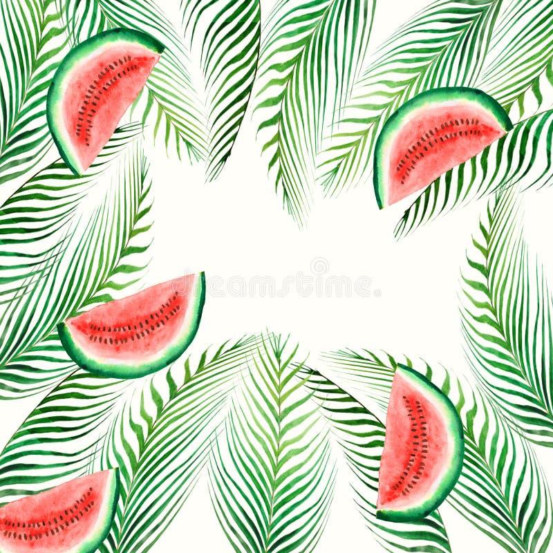 Άνευ ραφής τροπικές φύλλα σχεδίων Watercolor και φέτα του καρπουζιού που απομονώνεται στο άσπρο υπόβαθρο Απεικόνιση για ελεύθερη απεικόνιση δικαιώματος
