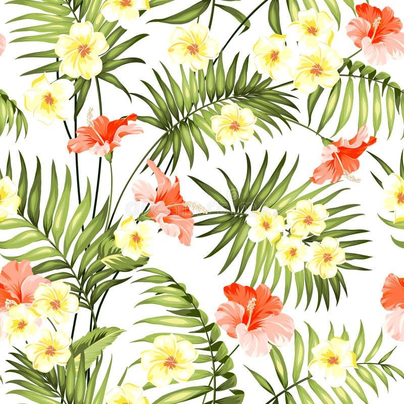 Άνευ ραφής τροπικό λουλούδι διανυσματική απεικόνιση