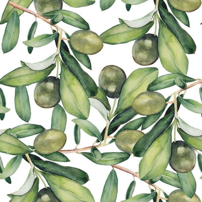 Άνευ ραφής υπόβαθρο με τα πράσινα κλαδί ελιάς διανυσματική απεικόνιση