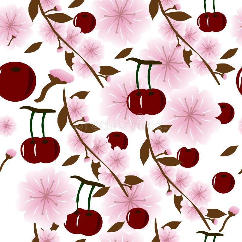Άνευ ραφής υπόβαθρο με τα juicy κεράσια και τα λουλούδια κερασιών απεικόνιση αποθεμάτων