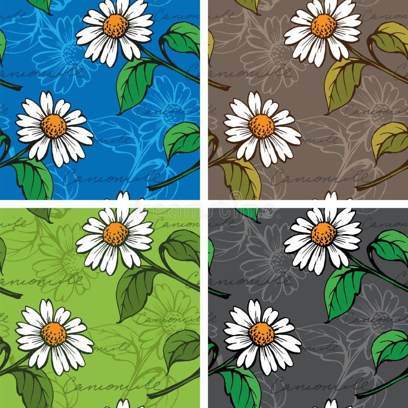 Άνευ ραφής υπόβαθρο με hand-drawn Chamomiles διανυσματική απεικόνιση