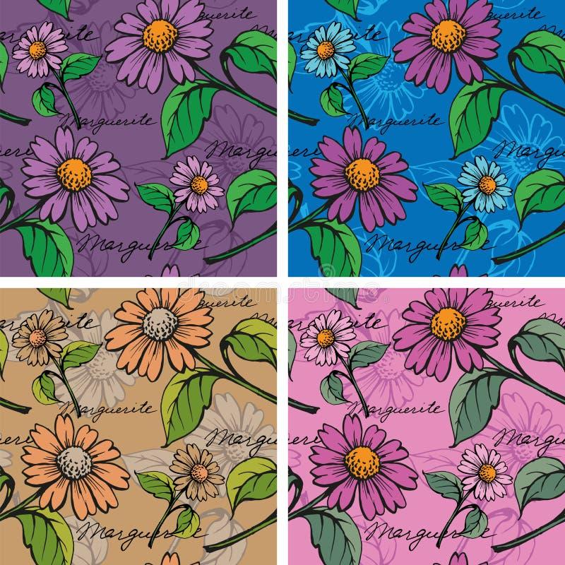 Άνευ ραφής υπόβαθρο με hand-drawn Marguerites απεικόνιση αποθεμάτων