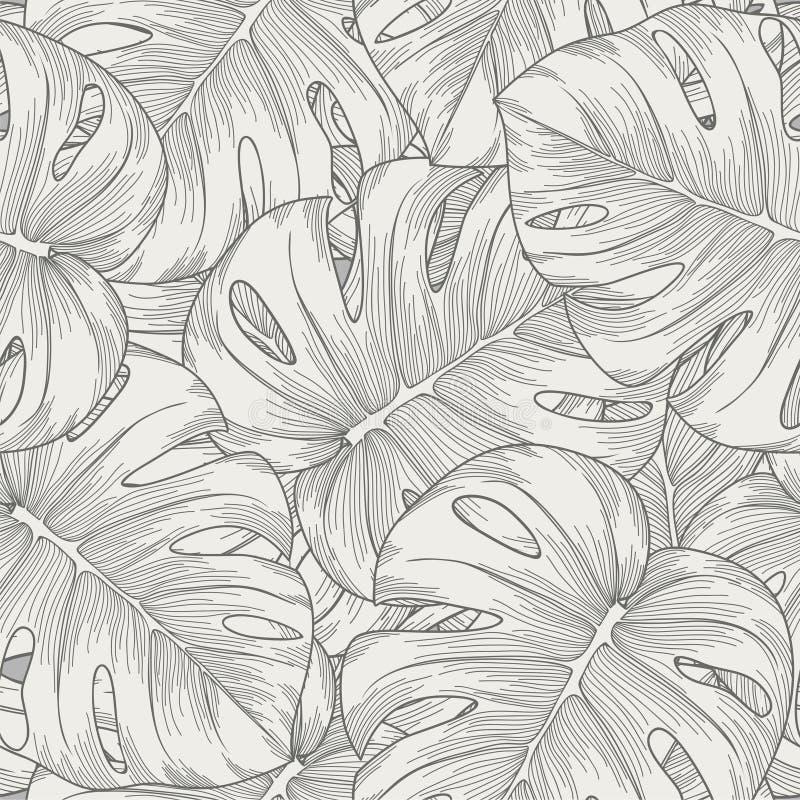 Άνευ ραφής υπόβαθρο. φοίνικας monstera φύλλων απεικόνιση αποθεμάτων