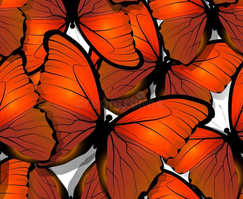 Άνευ ραφής φτερά σχεδίων πεταλούδων στο λευκό διανυσματική απεικόνιση