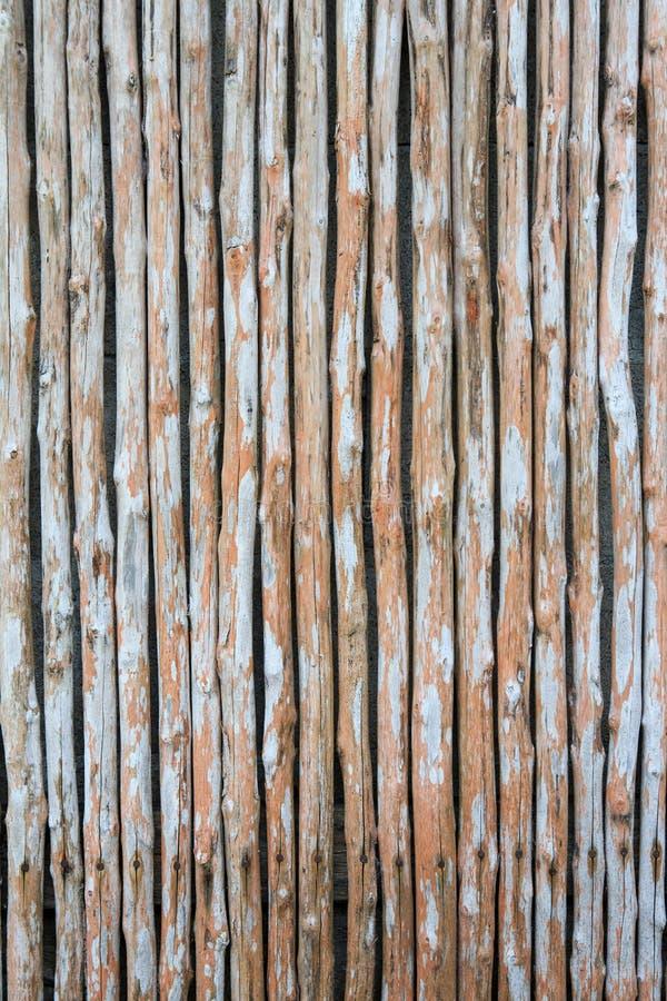Άνευ ραφής φυσική σύσταση του κάθετου τοίχου μπαμπού στοκ εικόνες