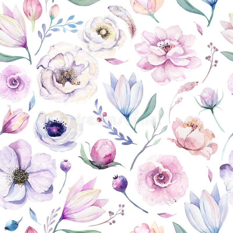 Άνευ ραφής floral σχέδιο watercolor άνοιξη lilic σε ένα άσπρο υπόβαθρο Το ροζ και αυξήθηκε λουλούδια, weddind διακόσμηση απεικόνιση αποθεμάτων