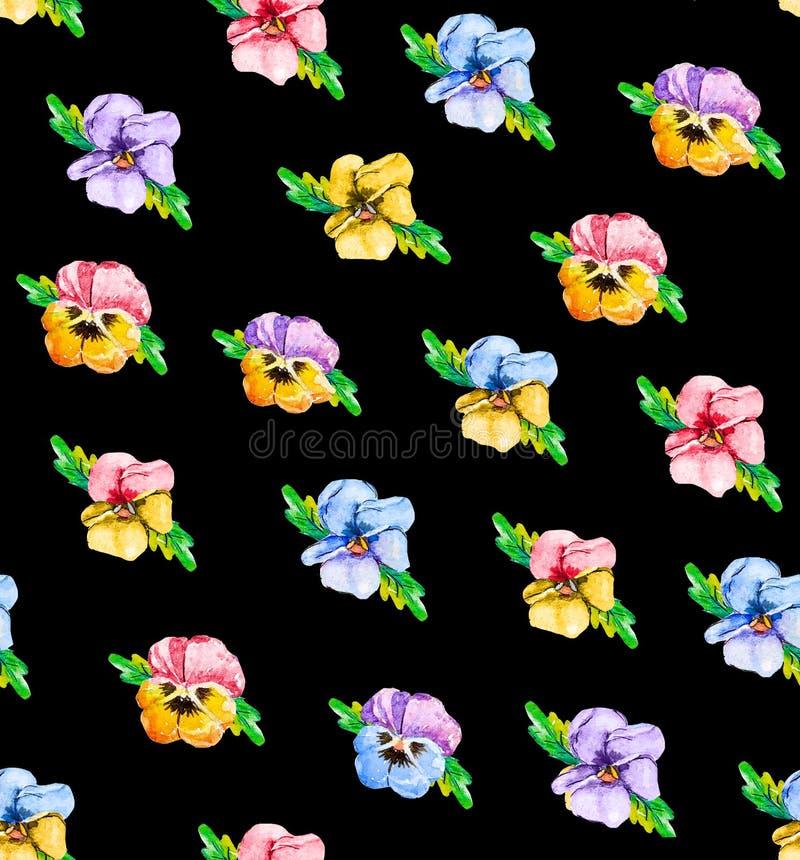 Άνευ ραφής floral σχέδιο Watercolor με το pansy viola Μπλε, ρόδινα, κόκκινα και κίτρινα λουλούδια σε ένα άσπρο υπόβαθρο, στο μαύρ ελεύθερη απεικόνιση δικαιώματος