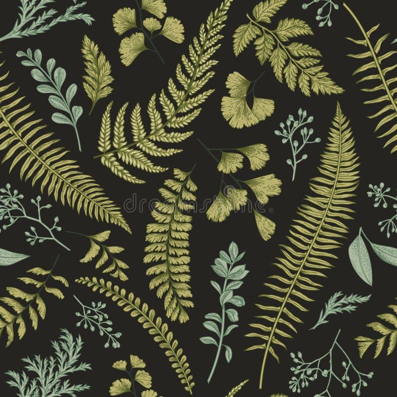 Άνευ ραφής floral σχέδιο με τα χορτάρια και τα φύλλα απεικόνιση αποθεμάτων