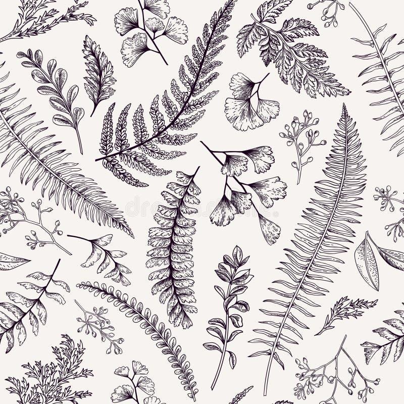 Άνευ ραφής floral σχέδιο με τα χορτάρια και τα φύλλα ελεύθερη απεικόνιση δικαιώματος