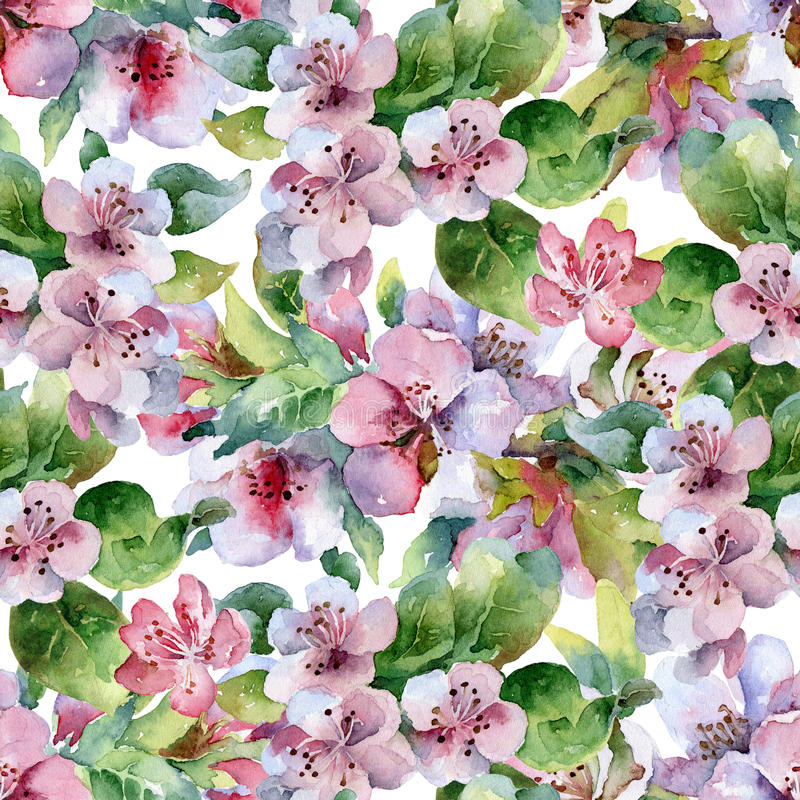 Άνευ ραφής floral σχέδιο με τους ανθίζοντας κλάδους διανυσματική απεικόνιση