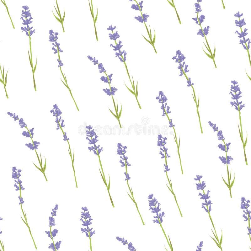 Άνευ ραφής lavender σχέδιο διανυσματική απεικόνιση
