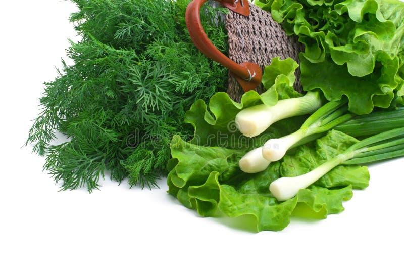 Άνηθος, πράσινο κρεμμύδι και σγουρή σαλάτα στο καλάθι στοκ φωτογραφία
