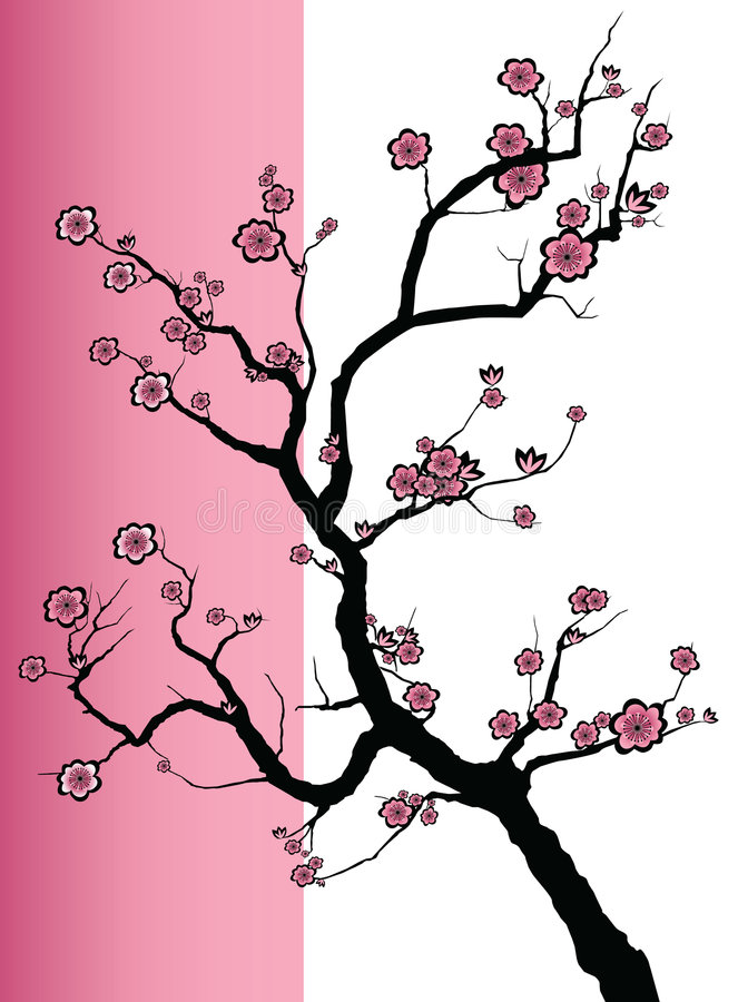 Άνθη άνοιξη Sakura απεικόνιση αποθεμάτων