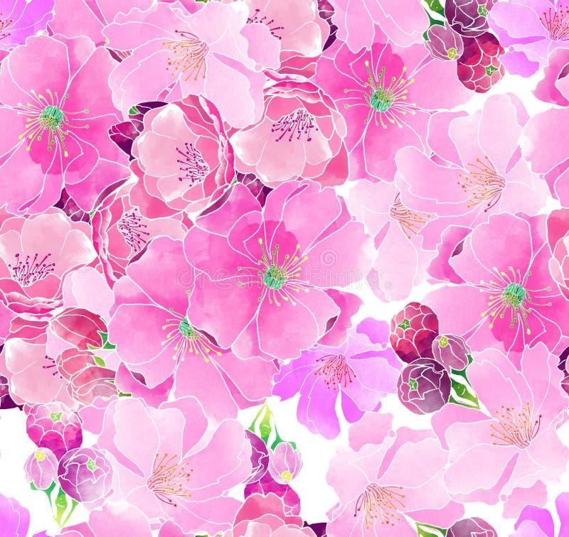 Άνθη κερασιών Watercolor ελεύθερη απεικόνιση δικαιώματος