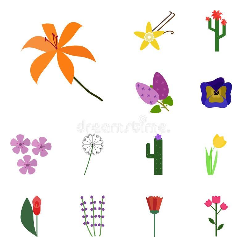Άνθισμα εικονιδίων Διανυσματικός κρίνος Εικονίδια λουλουδιών ελεύθερη απεικόνιση δικαιώματος