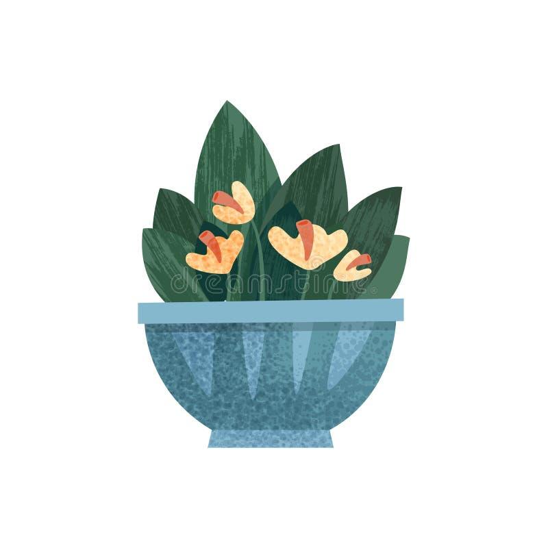 Άνθισμα houseplant σε ένα δοχείο, ένα κομψό σπίτι ή μια διανυσματική απεικόνιση ντεκόρ γραφείων σε ένα άσπρο υπόβαθρο ελεύθερη απεικόνιση δικαιώματος