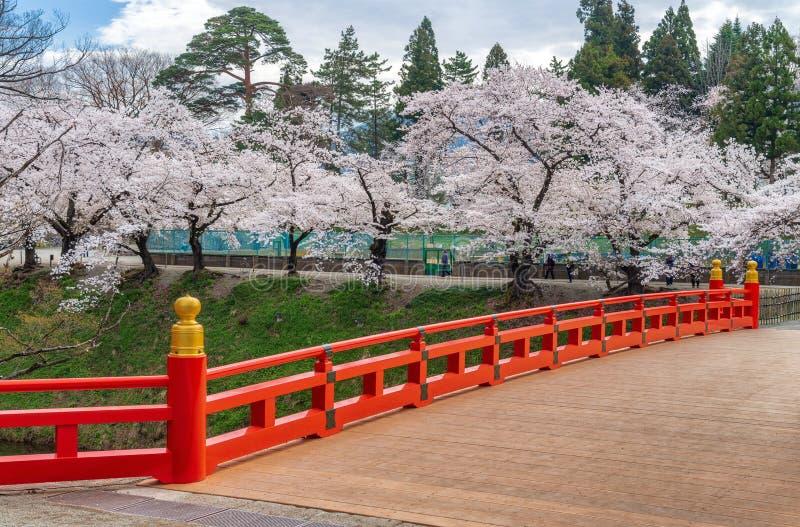 Άνθος κερασιών και κόκκινη γέφυρα στο κάστρο tsuruga-Jo στοκ εικόνα με δικαίωμα ελεύθερης χρήσης