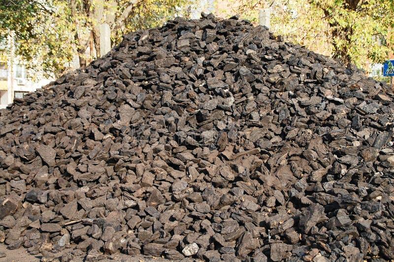 Άνθρακας που πλένεται για το χειμώνα στοκ φωτογραφίες με δικαίωμα ελεύθερης χρήσης