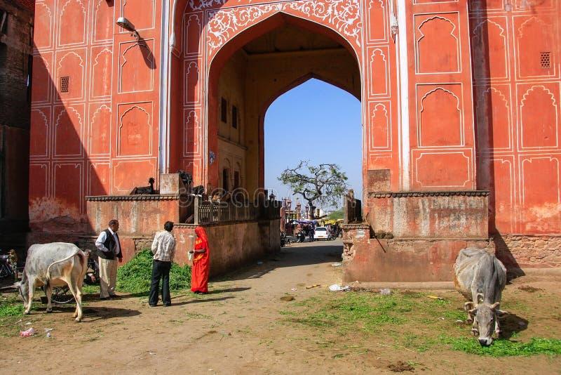 Άνθρωποι και αγελάδες μπροστά από Suraj POL, Jaipur, Ινδία στοκ εικόνα με δικαίωμα ελεύθερης χρήσης