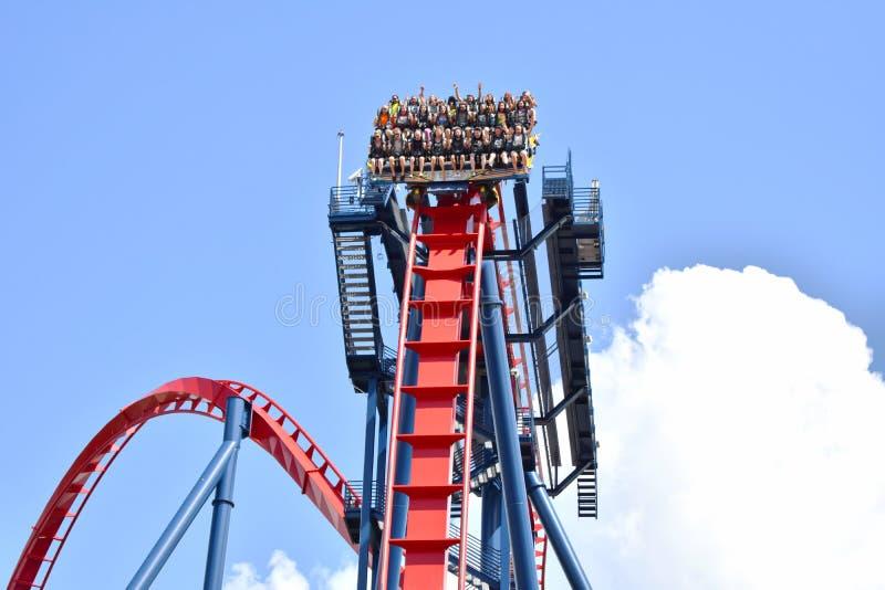 Άνθρωποι που έχουν ακραίο Rollercoaster Sheikra διασκέδασης στους κήπους Tampa Bay του Μπους στοκ εικόνα με δικαίωμα ελεύθερης χρήσης