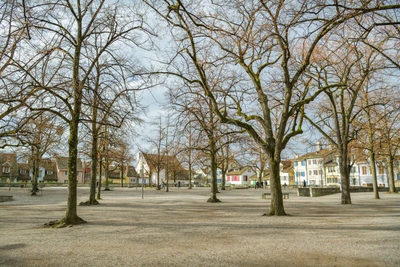 Άνθρωποι που απολαμβάνουν το χρόνο τους στο πάρκο Lindenhof στη Ζυρίχη στοκ εικόνες
