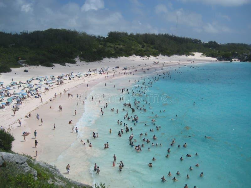 Άνθρωποι που κολυμπούν σε μια μπλε παραλία νερού κρυστάλλου στοκ φωτογραφία
