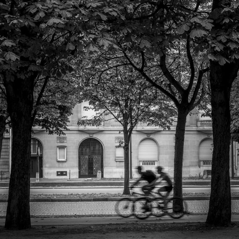 Άνθρωποι που οδηγούν τα ποδήλατα στοκ φωτογραφία