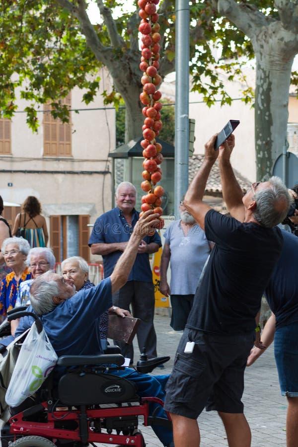 """Άνθρωποι που παίρνουν τις φωτογραφίες μιας κρεμώντας δέσμης των ντοματών κατά τη διάρκεια της έκθεσης νύχτας """"Ramellet """"ντοματών  στοκ εικόνες με δικαίωμα ελεύθερης χρήσης"""