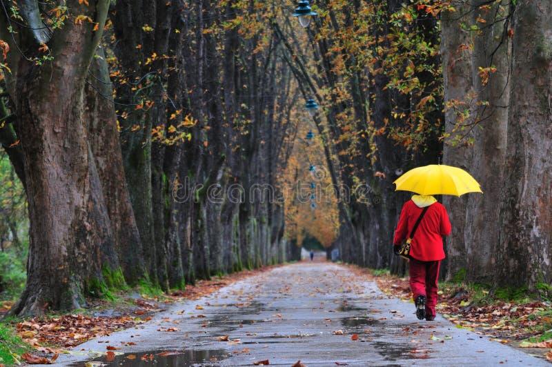 Άνθρωποι που περπατούν στη μακριά αλέα στο φθινόπωρο πτώσης sesson στοκ εικόνες
