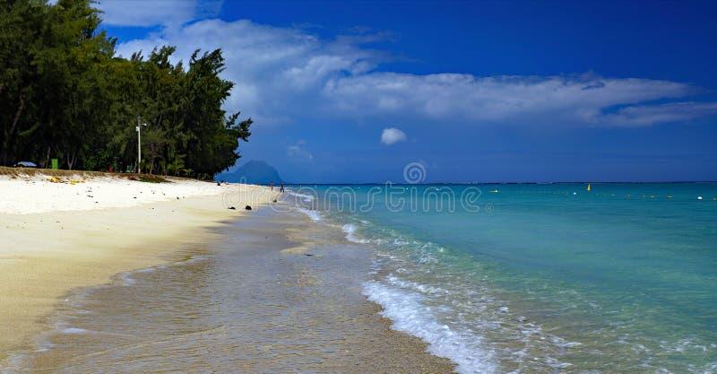 Άνθρωποι σε μια ηλιόλουστη μέρα περπατώντας στη δημόσια παραλία Flic en Flac με τροπικά δέντρα στην άκρη του Ινδικού Ωκεανού, Μαυ στοκ εικόνες