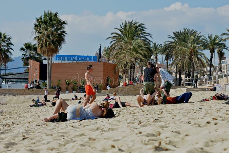 Άνθρωποι στη χαλάρωση της στιγμής στην παραλία στη Πάλμα ντε Μαγιόρκα στοκ φωτογραφίες με δικαίωμα ελεύθερης χρήσης