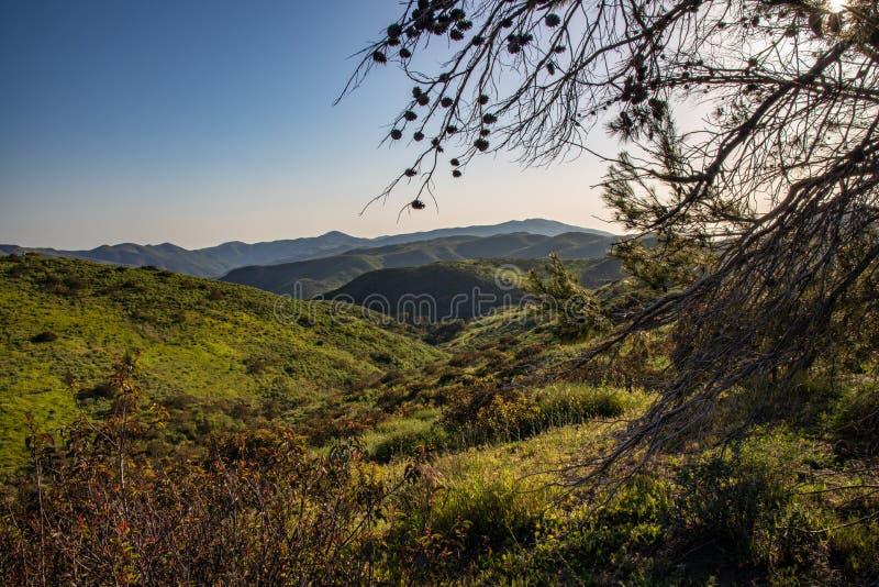 Άνοιξη βουνών της Σάντα Μόνικα στοκ εικόνα