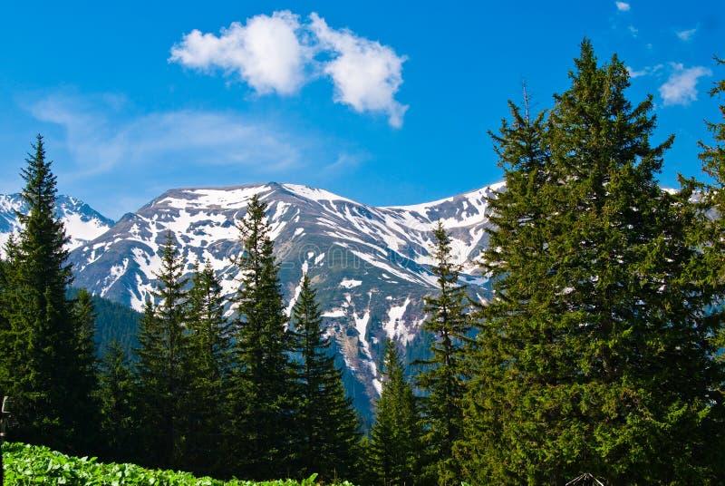 άνοιξη βουνών s τοπίων στοκ φωτογραφία με δικαίωμα ελεύθερης χρήσης