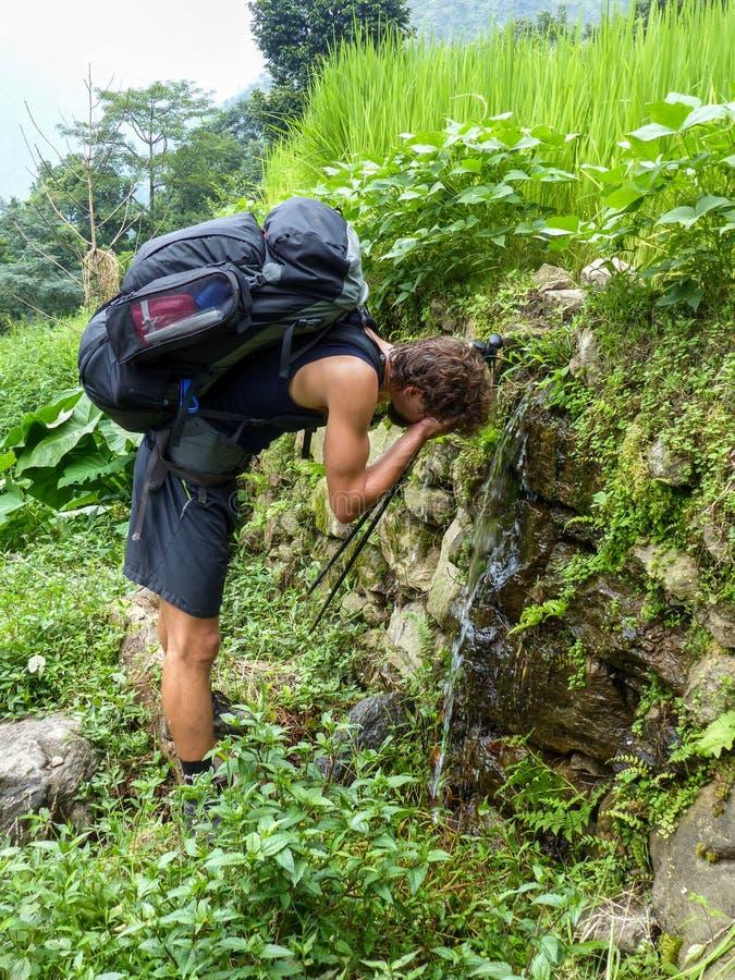 Άνοιξη γλυκού νερού στην τροπική ημέρα στοκ εικόνα