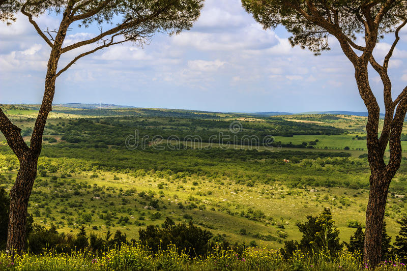 Άνοιξη Εθνικό πάρκο της Alta Murgia: πανοραμική άποψη - (Apulia) ΙΤΑΛΙΑ στοκ φωτογραφία με δικαίωμα ελεύθερης χρήσης